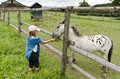 Girl feeding horse Stock Photo