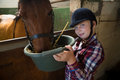 Girl feeding the horse in the stable Royalty Free Stock Photo