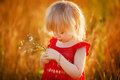 Girl with flower little blond holding chamomiles Royalty Free Stock Photos