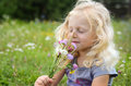 Girl with flowers blond smelling in a meadow Royalty Free Stock Images