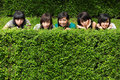 Girl friends group hiding behind the tree Royalty Free Stock Images