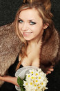 Girl in fur collar Royalty Free Stock Photos