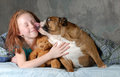 Girl and her dog pre teenage ready for cuddling with english bulldog Stock Image