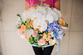 Girl holding beautiful mix flower bouquet with white orchid Royalty Free Stock Photo