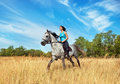 Girl on a horse Stock Image