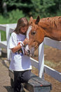 Girl and horse a young at the end of summer camp says a tender goodbye to her favorite petting its nose while touching heads Royalty Free Stock Photos