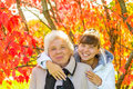 Girl hugging her old grandmother in park Royalty Free Stock Photo