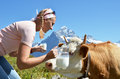 Girl jug milk cow jungfrau region switzerland Royalty Free Stock Photos