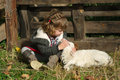 Girl with lamb on the farm little Royalty Free Stock Photography