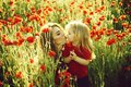 Girl and little boy or child in field of poppy Royalty Free Stock Photo