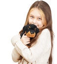 Girl with long hair holding a toy little dog Royalty Free Stock Images