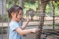 Girl Looking Animal In Zoo