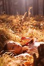 Girl lying in autumn forest Royalty Free Stock Images