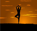 Girl makes yoga exercise at the gloaming vector Stock Photo