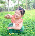 Girl picking the little flower a is a yellow in park Royalty Free Stock Photo