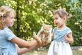 Girl play with kitten girls outdoor in the park Stock Photos
