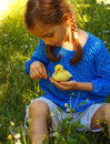 Girl playing with baby duck Royalty Free Stock Photo