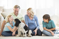 Girl playing with dog while family looking at her little pet in living room Royalty Free Stock Photography