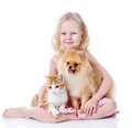 Girl playing with pets - dog and cat. Royalty Free Stock Photo