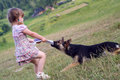 The girl plays with a sheep-dog Royalty Free Stock Photography