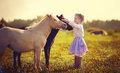 Girl and ponies a cute white in jockey boots walking among little in the field on a sunny summer day Royalty Free Stock Photo