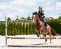 Girl practicing horse riding young jumping over hurdle Royalty Free Stock Photography