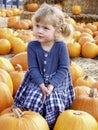 Girl pumpkin Stock Image
