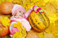 Girl with pumpkins Stock Image