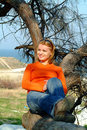 Girl relaxing on a tree Stock Image