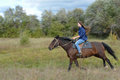 Girl rides on horseback summer siberia Royalty Free Stock Photography