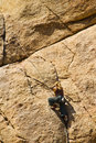 Girl rock climbing, Joshua Tree National Park Royalty Free Stock Image