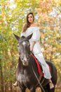 A girl sits on a horse against a background of autumn foliage. Outside. Royalty Free Stock Photo