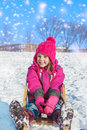 Girl on sledges happy emotional Stock Photos