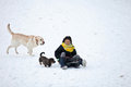Girl sledging with her dog in winter in denmark Stock Photos
