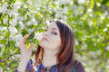 Girl sniffs blossoming apple tree she looks at camera Royalty Free Stock Image