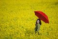 Girl standing middle canola plantation Stock Photo