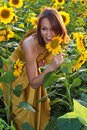 Girl in sunflowers Stock Photo