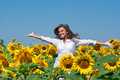Girl in sunflowers Stock Image