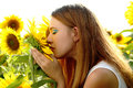 Girl in the sunflowers Royalty Free Stock Photo