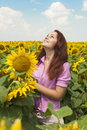 Girl in sunflowers beautiful a field of Royalty Free Stock Photo