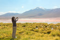 Girl taking pictures on a mobile phone of laguna colorado bolivia Royalty Free Stock Images