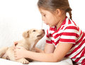Girl talking with puppy little a Stock Images