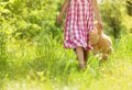Girl with teddy cute little in pink dress is playing brown in green nature Royalty Free Stock Photos