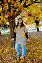 Girl throw yelow leaves Stock Images