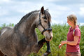 Girl training horse Royalty Free Stock Photo