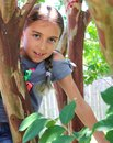 stock image of  Girl Climbs Tree on Summer Day