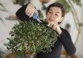 Girl trimming olive tree bonsai Royalty Free Stock Photo