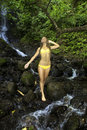 Girl in a tropical waterfall young woman yellow bikini forest hawaii Stock Photos