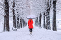 Girl with umbrella walking on the path and row tree. Winter. Royalty Free Stock Photo