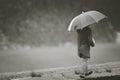 Girl under rain with umbrella Royalty Free Stock Photo
